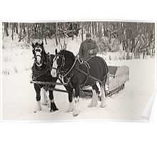 Christmas Sleigh Ride Poster