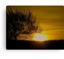Reality Sunset Canvas Print