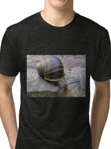 Slowly now... Tri-blend T-Shirt