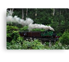 Puffing Billy, Dandenong Ranges Canvas Print