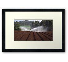Kit Kat paddocks - Forth, Tasmania Framed Print