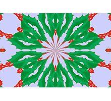 Green For Christmas Photographic Print