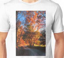 SPARKS LANE,AUTUMN EVENING Unisex T-Shirt