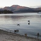 Luss At The End Of The Day, Scotland by MagsWilliamson