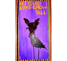 Let Your Love Grow Tall Photographic Print