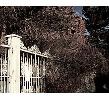 Rusted Pearly Gates Photographic Print