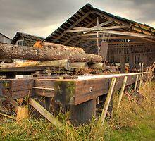 Samish Sawmill by Dale Lockwood