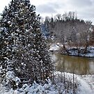 Nottawasaga River by deb cole