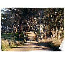 ~ Country Road ~ Poster