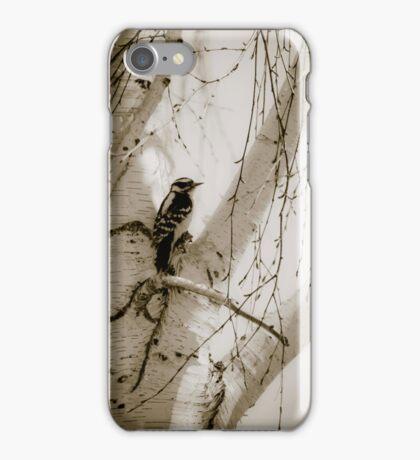 Bird iPhone Case/Skin