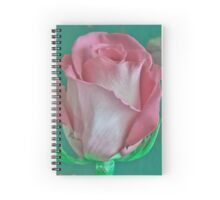 Pink And Aqua Rose Delight Spiral Notebook