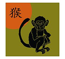 Chinese Zodiac Monkey Year of The Monkey Symbol Photographic Print