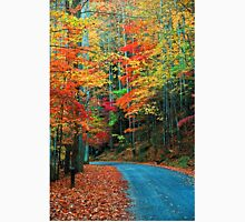 AUTUMN ROAD,RICH MOUNTAIN T-Shirt