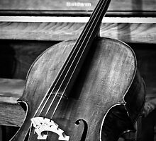 Rhapsody in Black & White by DreamOfAutumn