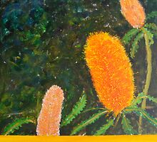 Banksia beauty by Kay Cunningham