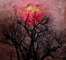 Hot Winter by Andrew Paranavitana