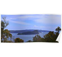 Lion Island and Pittwater from the Flint and Steel walk Poster