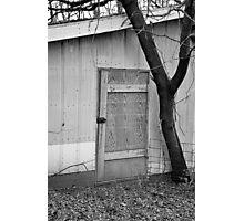 Arboreal Guardian  Photographic Print
