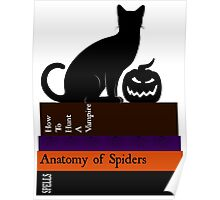 The Black Cat And It's Books Poster
