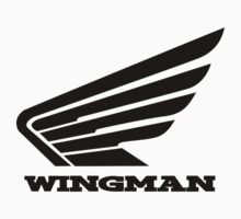Wingman Black by Cat Games Inc