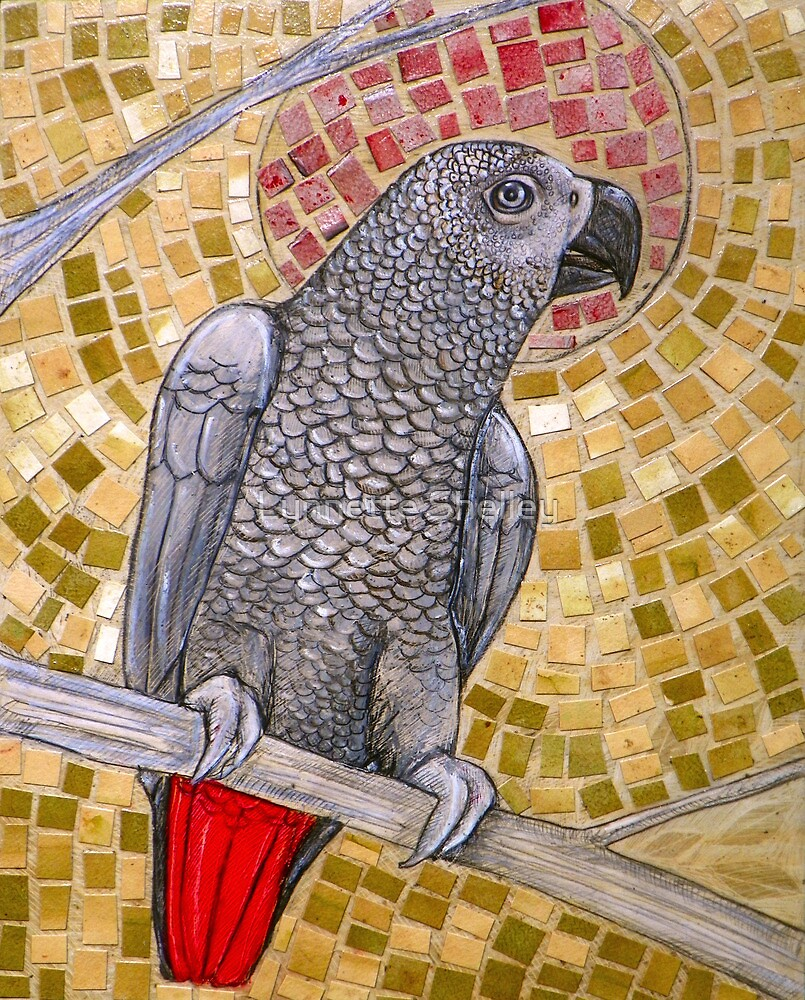 African Grey Sunset by Lynnette Shelley