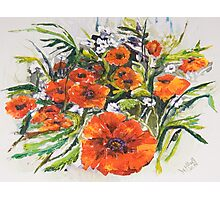 Poppies and Wildflowers - For Who Likes Them... Photographic Print