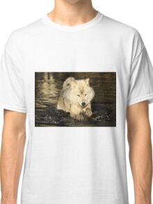 Arctic wolf doing the doggy paddle Classic T-Shirt