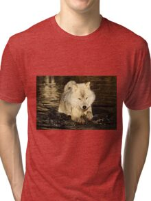Arctic wolf doing the doggy paddle Tri-blend T-Shirt