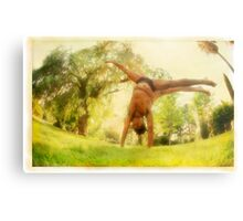 Handstand, Yoga in the park Metal Print