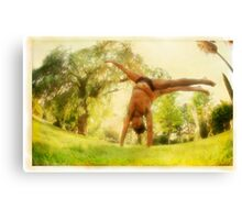 Handstand, Yoga in the park Canvas Print