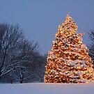 My Favorite Christmas Tree by mwinters418