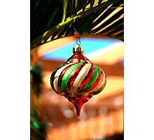 South FL Decorations Photographic Print