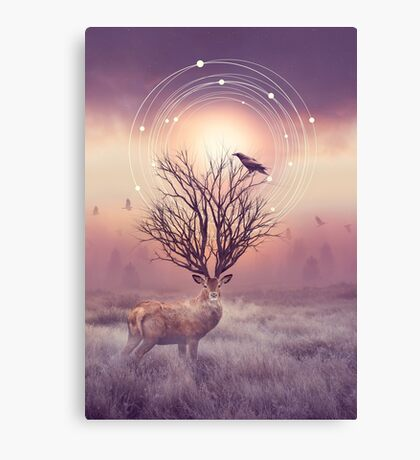 In the Stillness Canvas Print