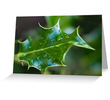 Mahonia Leaf with rain drops Greeting Card