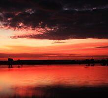 sunrise over Celery Fields by kathy s gillentine