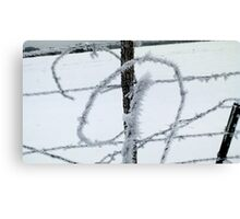 Barbed Wire and Ice Canvas Print