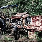 Abandoned Tractor by Gert Lavsen