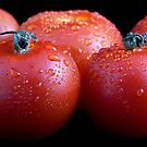 Wet whole tomatos by Gert Lavsen