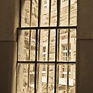 0969 Through the barred window by DavidsArt