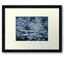 2011 - snowfall Framed Print
