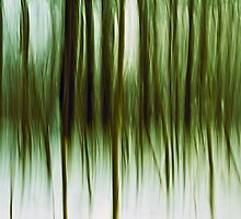 Tree Abstraction by Gert Lavsen