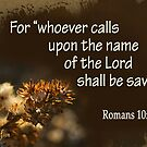 Saved ~ Romans 10:13 by Robin Clifton
