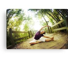 Yoga asana in the park, Spiritual Practice Canvas Print