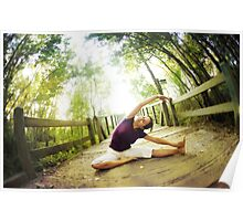 Yoga asana in the park, Spiritual Practice Poster