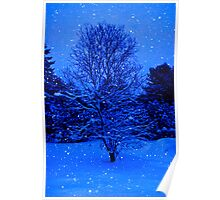 Snow Falling on Maple Poster