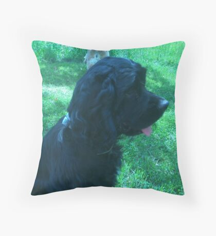 Donny Cocker Spaniel Throw Pillow