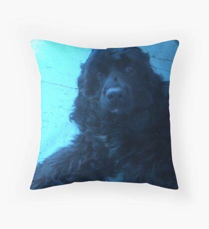 Donny the Cocker Spaniel Throw Pillow