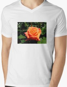 BEAUTIFUL PEACH ROSE Mens V-Neck T-Shirt