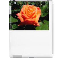 BEAUTIFUL PEACH ROSE iPad Case/Skin
