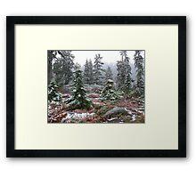 Tuck & Robin Lake Framed Print